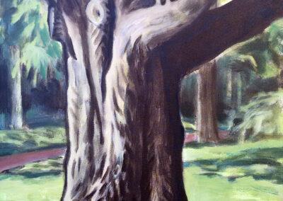 Alex de Wolf - Boomstudie #7 - acryl op doek - 2018 - 50 x 40 cm