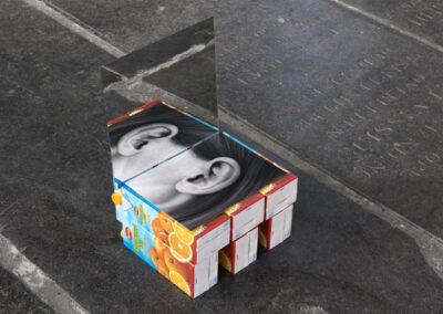 Eva van Ooijen - The new life - 2018 - installatie