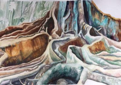Sanneke Griepink - Roots - Azoren - 2018 - aquarel op papier - 70 x100 cm