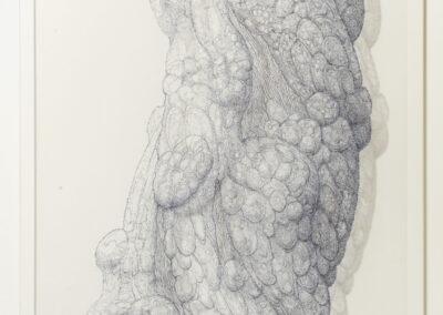 Marije van Wieringen - TwistedTrunk - 2010 - tekstmarker-perspex - 100 x 50cm - FotoPietGispenPhotography